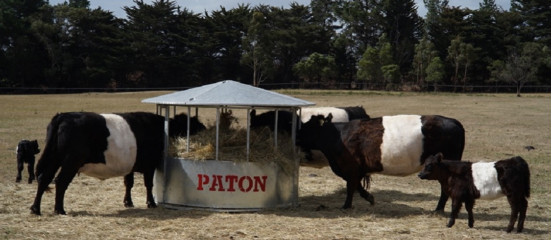 Paton Hay feeders - Hay Ring - Lid & Base - Resized Wide Aspect